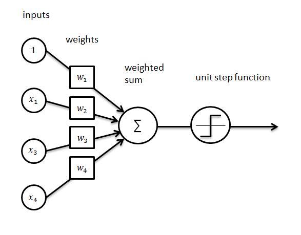 perceptron_schematic_overview